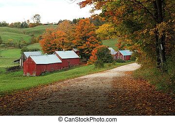 農場, jenny