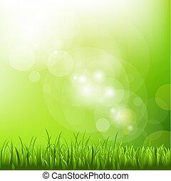 迷離, 背景, 草, 綠色