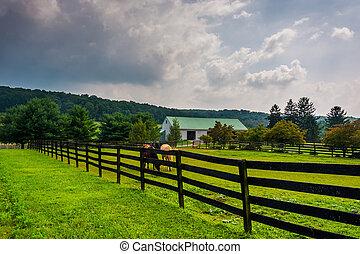 鄉村, 在上方, pennsylvania., 云霧, 農場, 約克, 黑暗, 縣