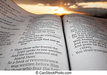 重要部份, 傍晚, malachi, 背景, 神圣, 打開, 章, 聖經, 4, 太陽, 云霧, 2., 節