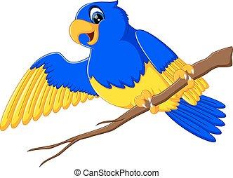 金剛鸚鵡, 卡通