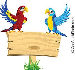 金剛鸚鵡, 空白, 鳥, signboard