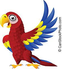 金剛鸚鵡, 詳細, 鳥, 卡通, 有趣