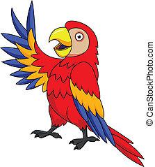 金剛鸚鵡, 鳥, 卡通