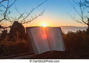 閃光, 藍色的背景, 日出, 聖經, 打開, japan., 城市, 海, 富士, 山, 天空