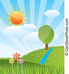 陽光普照, 風景, 森林, 春天