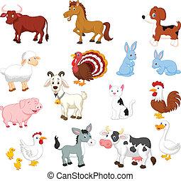 集合, 動物, 彙整, 農場
