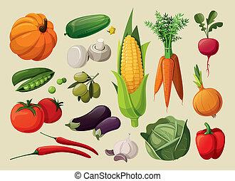 集合, vegetables., 美味