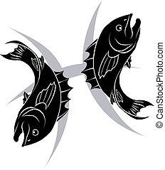 雙魚宮, 黃道帶, 星象, s, 占星術