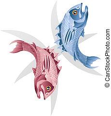 雙魚宮, fish, 星徵候