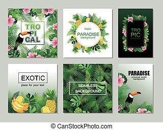 離開, 棕櫚, 熱帶, printable, 彙整, 卡片, toucan.