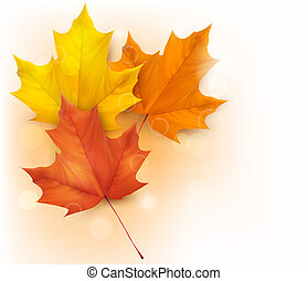 離開, 背景, 秋天