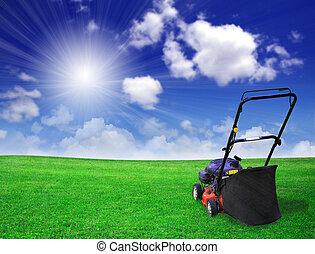 領域, 草坪, 綠色, 掃倒