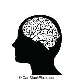 頭, 把畫成側面影像, 腦子