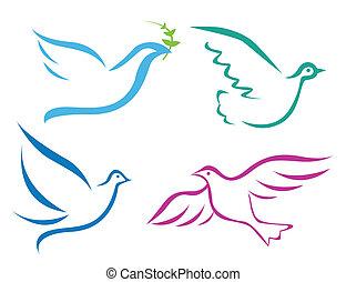 飛行, 插圖, 鴿, 矢量