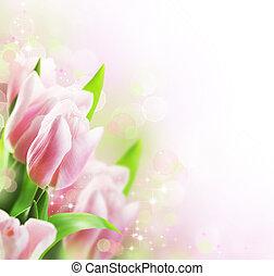 鬱金香, 春天, 邊框, 設計