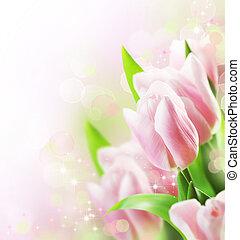 鬱金香, 邊框, 設計, 春天