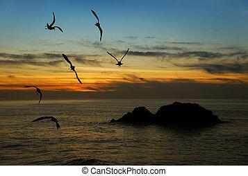 黃昏, 加利福尼亞