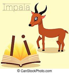 黑斑羚, 說明者, vocabul