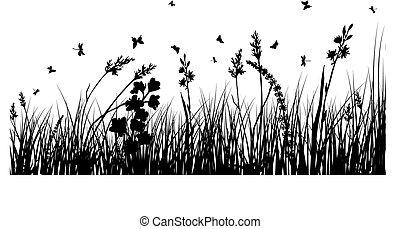 黑色半面畫像, 草地