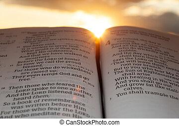 4:2., 傍晚, 太陽, malachi, 打開, 重要部份, 云霧, 聖經, 背景