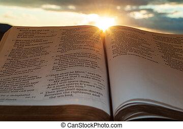 4:2., 傍晚, 射擊, 太陽, malachi, clouds., 打開, 重要部份, 神圣, 水平, 聖經, 背景