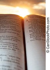 4:2., 背景, 神圣, malachi, 垂直, 聖經, 打開, 射擊, 太陽, clouds., 傍晚, 重要部份