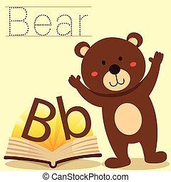 b, 說明者, vocabular, 熊