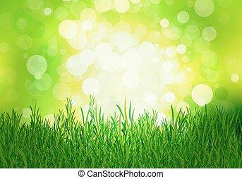 beec, 綠色的草, 背景