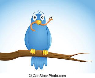 bird...., 早