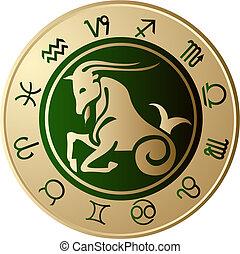 capricorn, 星象