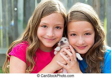 chihuahua, 寵物, 狗, 雙生子, 姐妹, 小狗, 玩