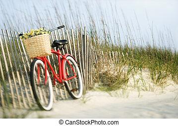 flowers., 自行車