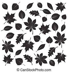 leafs., 矢量, 黑色, illustration., 彙整