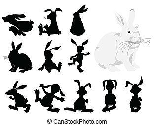 movement., 插圖, 黑色半面畫像, 矢量, 黑色, 兔子