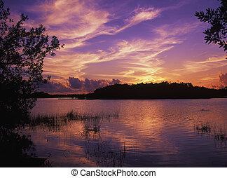 paurodus, 傍晚, 池塘