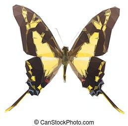 protographium, 蝴蝶, thyastes