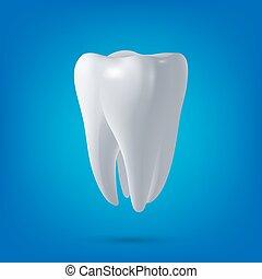 render., 牙齒, 健康, 3d, 牙齒, 矢量, 設計, element., 概念, 醫學