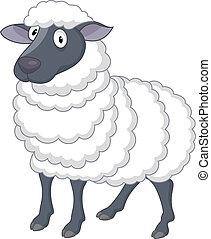 sheep, 卡通