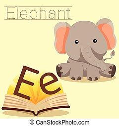 vocab, e, 說明者, 大象