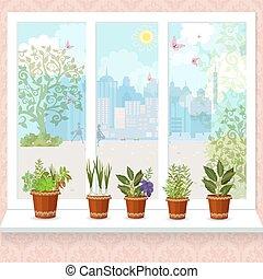 windowsill., 花, 城市, 罐, 陽光普照, 藥草, 機智, 生長