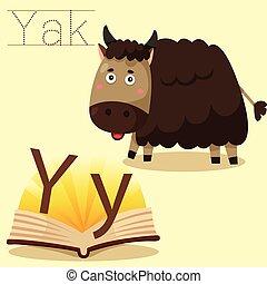 y, 說明者, yak, 詞彙