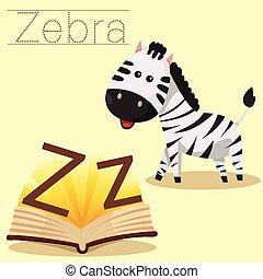 z, 說明者, zebra, vocabula